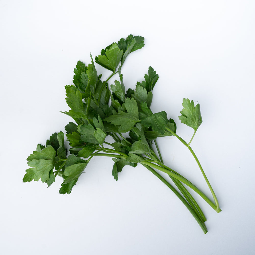 Flat Parsley 20g