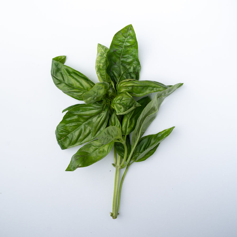A 20g bunch of fresh basil leaves.