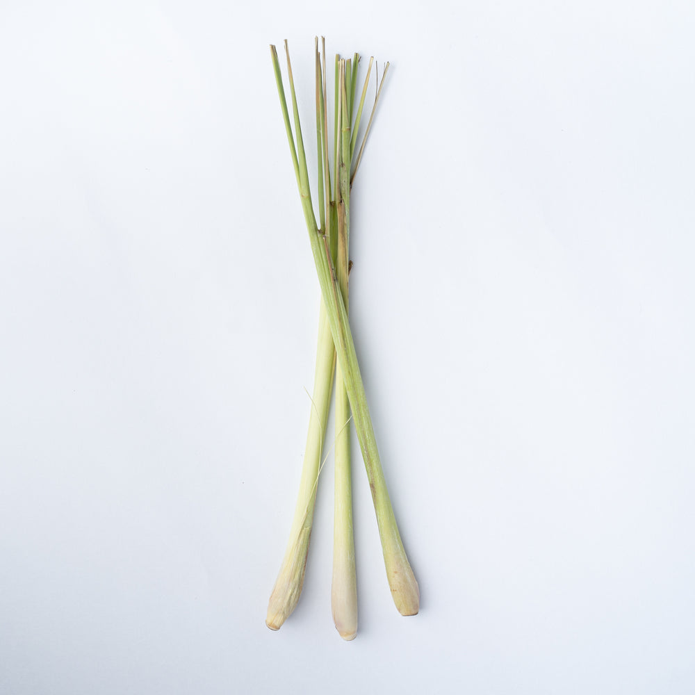 Lemongrass (one stem)