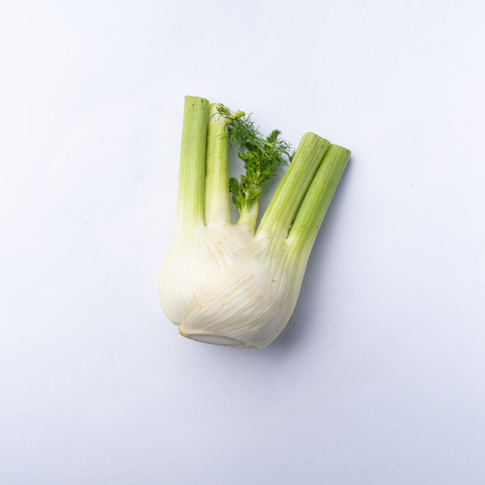 A bulb of fennel with the tops cut off.