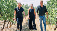 the three winemakers of All Saints Estate standing in between grape vines, blonde, handsome, wearing black and denim