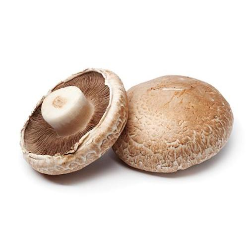 Portobello Mushroom (pc)-Feather & Bone (2404826153018)