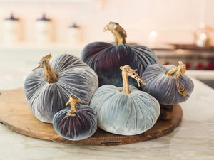 Exclusive pumpkins for Plush Pumpkin. Fall pumpkin decorations.