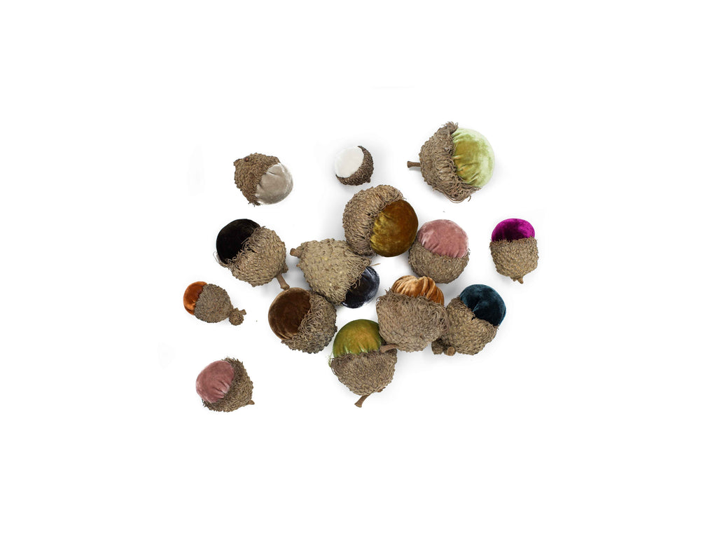 Acorn mix - Medium Set of 6