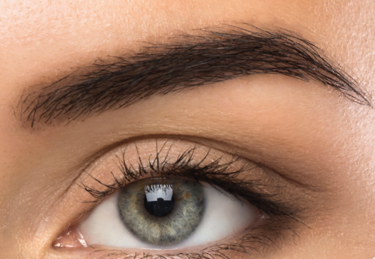 Advanced Training - Ombré / Fashion Powder Brows (668527525948)