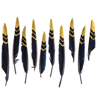 Smudging Feather, Black with gold Goose