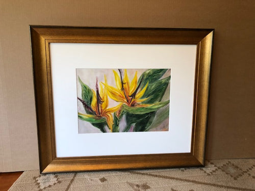 Sterlitzia   Bird of Paradise 21 in x 25 framed