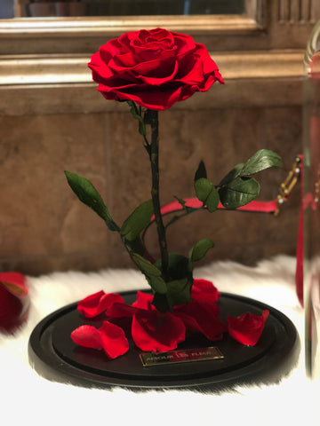 Real roses that last over a year