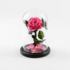 The Mini Timeless Rose - Pink