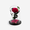 The Mini Timeless Rose - Hot Pink