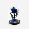 The Mini Timeless Rose - Royal Blue