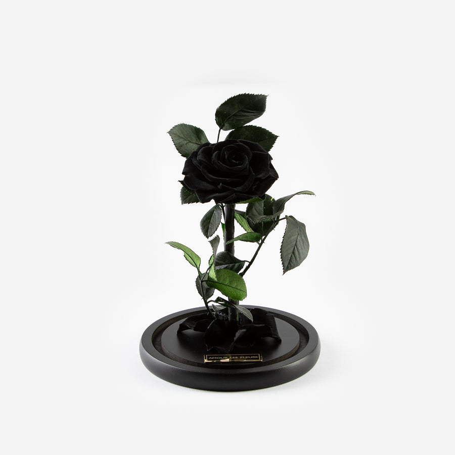 The Mini Timeless Rose - Black