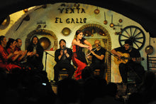 Granada Day & Night: Alhambra completa con audioguia más show flamenco