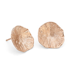 Limpet Studs 9ct Rose Gold
