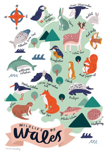 Wildlife of Wales illustration art print