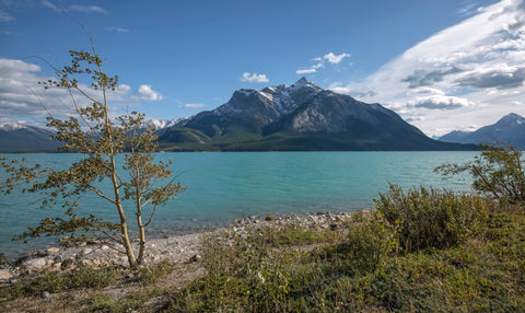 Abraham Lake, Clearwater County, Alberta
