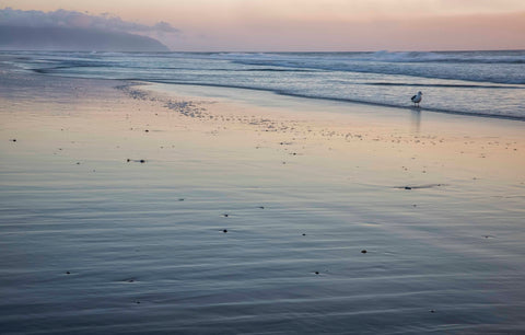Final light of the day at Pacific City - Oregon Coast