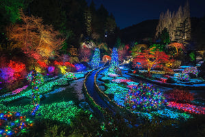 Butchart Garden's Sunken Gardens in the Winter - Brentwood, BC