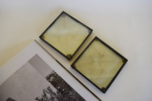 Pressed Leaf Glass Duo