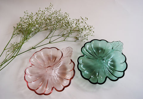 Colored Clamshell Dishes