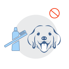 Brushing dogs' teeth helps them stay healthy, but takes time (and they wiggle), not a fast cure for dog breath | NonScents.com