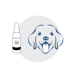 NonScents Dog Oral Spray safely destroys odor-causing compounds while promoting oral health | NonScents.com