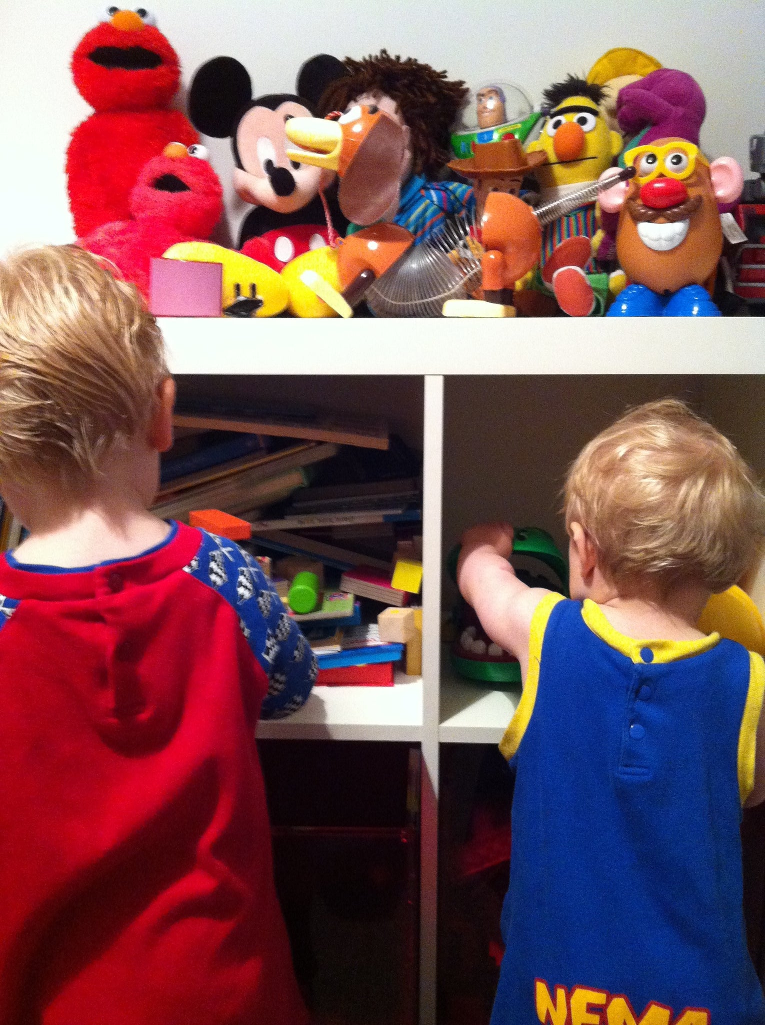 Pre-Christmas Toy Declutter