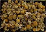 Camomile Flowers - Ten-Teas Loose Leaf Tea