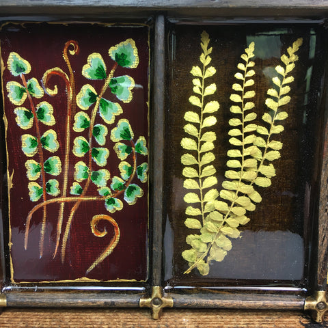 #066 Garden Fern Collection
