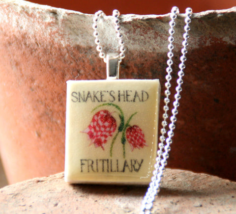 Seed Envelope Scrabble Tile Pendant and Teeny Tiny Tin Fritillary
