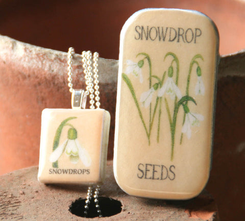 Seed Envelope Scrabble Tile Pendant and Teeny Tiny Tin Snowdrop