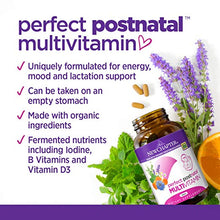 New Chapter Perfect Postnatal Vitamins, Lactation Supplement with Fermented Probiotics + Wholefoods + Vitamin D3 + B Vitamins + Organic Non-GMO Ingredients - 96 Vegetarian Tablets