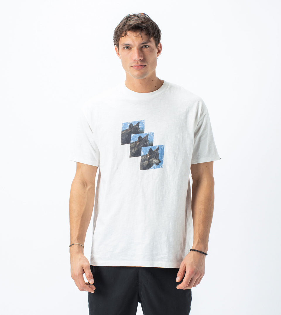 Three-Head Box Tee Milk