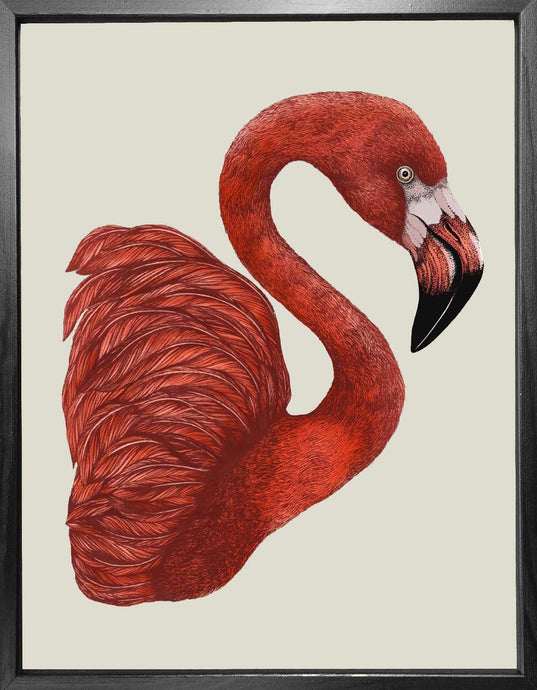 'Antique Flamingo II' Fine Art Print