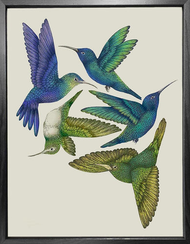 'Antique Hummingbirds I' Fine Art Print
