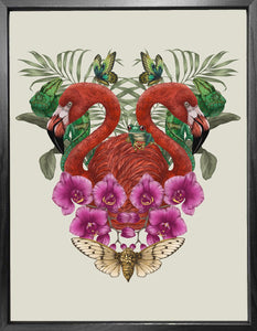 'Antique Tropical Flamingo' Fine Art Print