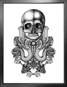 'Death's Head' Fine Art Print