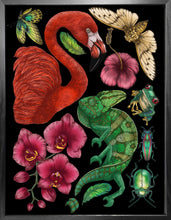 'Antique Tropical Flora & Fauna - Black' Fine Art Print