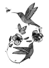 'Hummingbird & Hibiscus' Fine Art Print - Emily Carter London