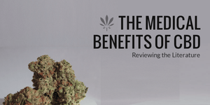 The Medical Benefits of CBD: Reviewing the Literature