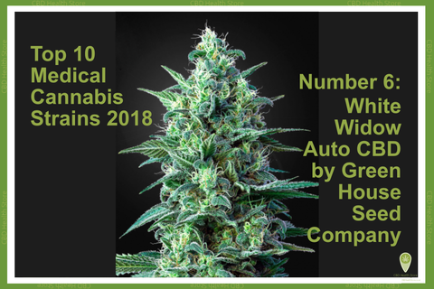 White Widow Auto CBD by Green House Seed Company