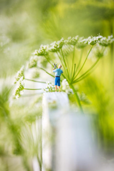 Tiny People - Gardening