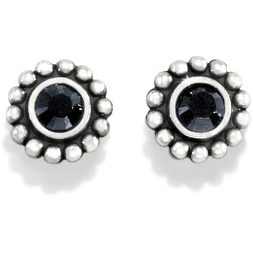 Twinkle Mini Post Earrings Black