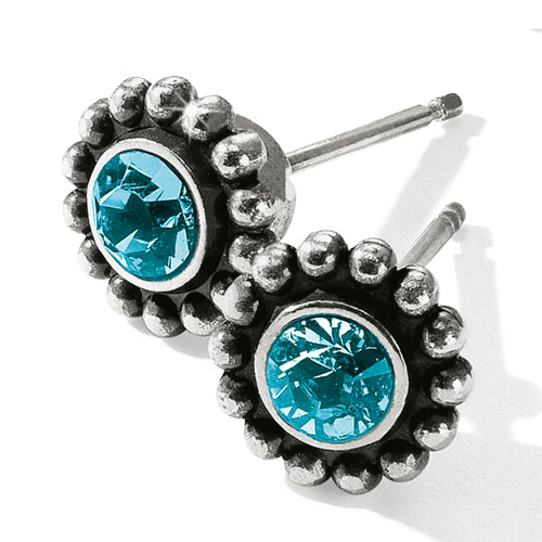 Twinkle Mini Post Earrings Zircon