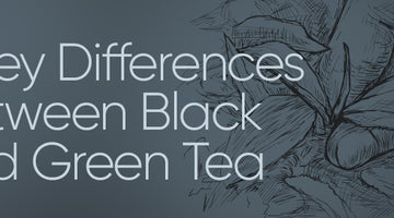 3 Key Differences Between Black and Green Tea