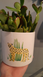 Panthera Pot
