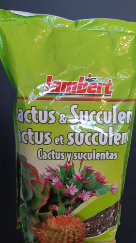 Cactus and Succulent Soil