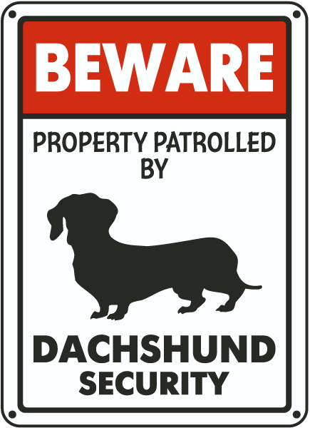 Dachshund on Patrol