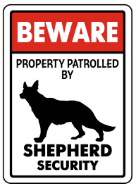 Sheperd on patrol