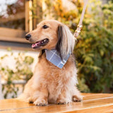 Dusty Blue bandana